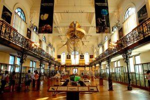 Монако музей